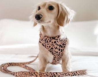 Dog Harness with Cute Bow in Leopard Print Soft Cord Fabric with Rose Gold Metal Fittings Silver Metal or Black Plastic Fittings