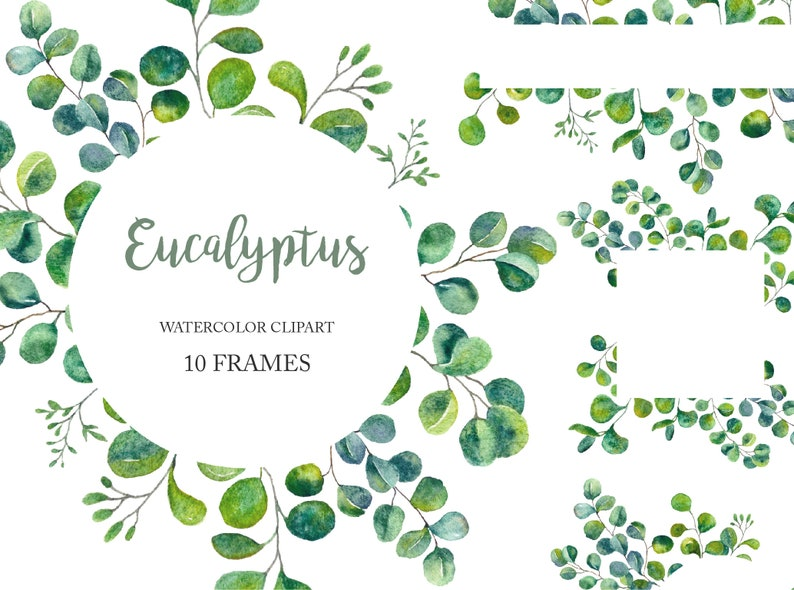 10 Frames Green Leaves Watercolor Eucalyptus Frame Foliage Clipart Png Wreath Wedding Invitation Template Greenery Floral Free Commercial