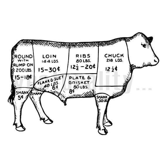 Vintage Victorian Butcher Meat Cuts Beef Cow Illustration Vector Instant Download Ai  eps  svg  pdf  dxf  png  jpg Design Cut Print