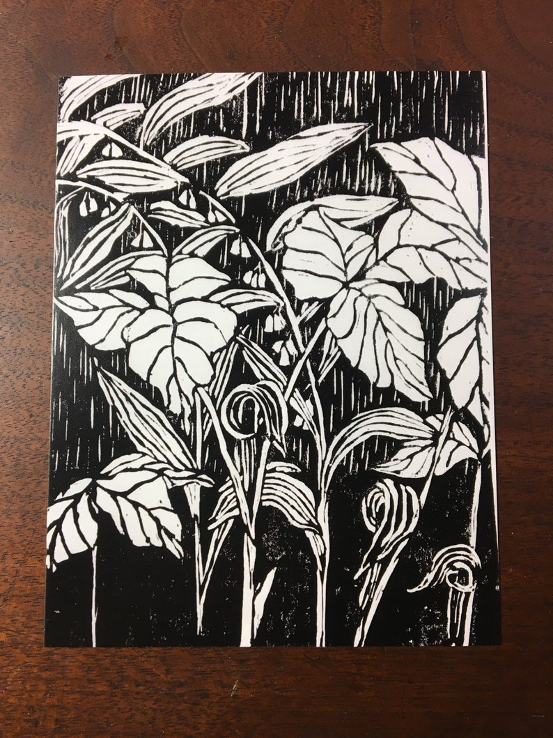 set of 8 art postcards of jack in the pulpit and Solomon/'s seal detail of a woodcut by Margot Torrey