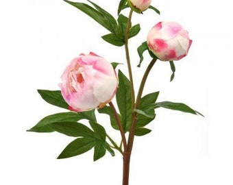 """25""""Long Blush Peony Bush Floral Stems for Wreath Supplies, Real Touch Floral and Garden Wreath Embellishments, Blush Wedding Bouquet"""