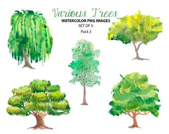 Watercolor tree | Etsy