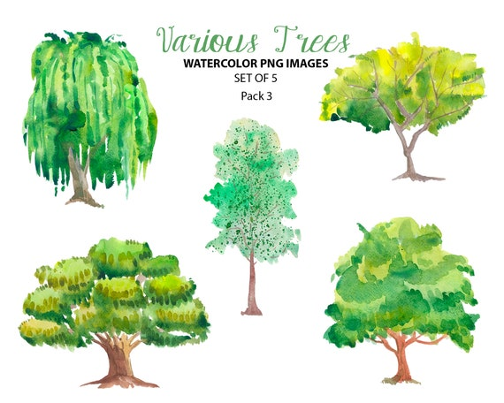 forest clipart watercolor trees clipart nature clip art etsy forest clipart watercolor trees clipart nature clip art