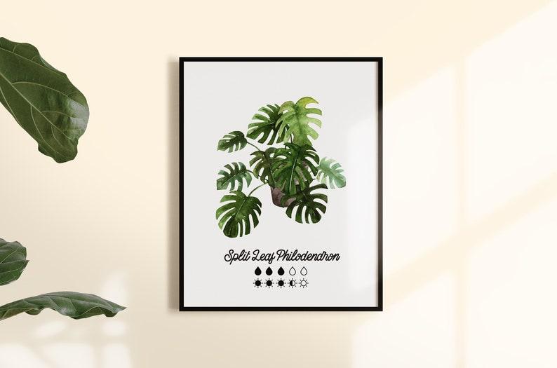 Plant Care Printable