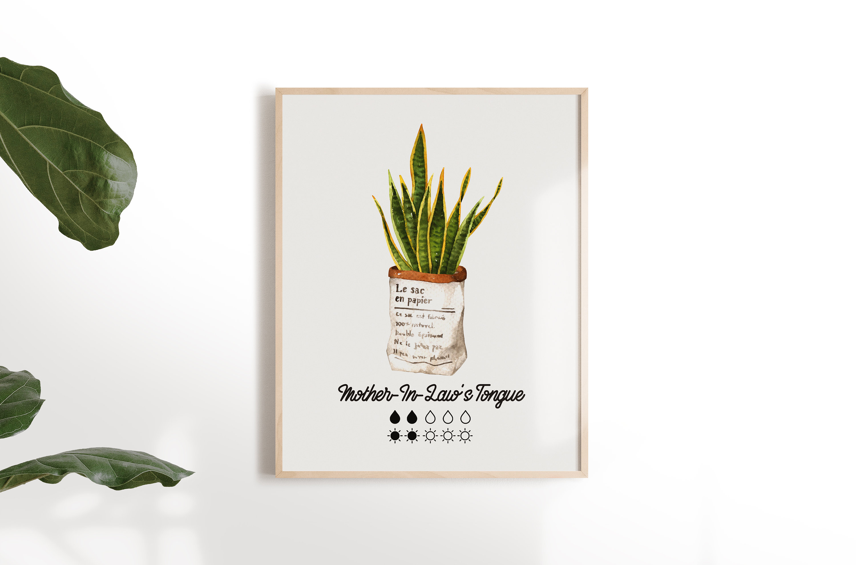 Mother-In-Law's Tongue Plant Care Digital Art Print | DIY Art Print | Snake  Plant Printable | 8x10 Art Print