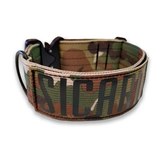 Premium 2 Dog Collar with quick release Cobra and personalized patch