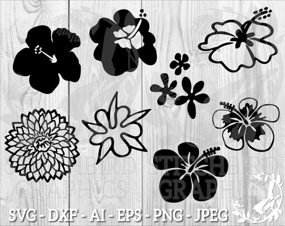 Dxf Eps Tropical Flowers Clipart Silhouette Studio Cricut Tropical Flowers SVG Instant Download Commercial Use SVG Silhouette SVG