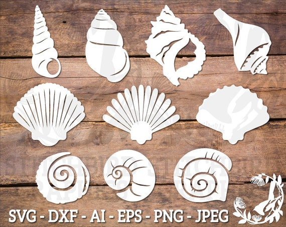 Instant Download Dxf Commercial Use SVG Sea shell Clipart Sea Shell 1 SVG Silhouette SVG Silhouette Studio Cricut Vector Art Eps