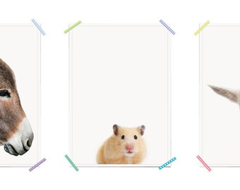 Hei/ßluftballon Fahrrad M/ädchen Baby Hase Wanddeko Bildergalerie Deko myprinti/® 3er Set Kinderzimmer Poster Babyzimmer Bilder Gr/ö/ße DIN A3 Aquarell