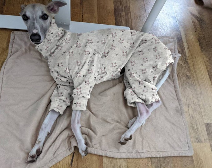 Featured listing image: Windhund, Galgo, Podenco, Greyhound Whippet, Pullover Pyjama handmade Schlafanzug Hundemantel Hundepullover