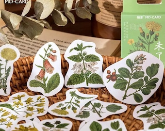 45 pcs Vintage Potted Plants Stickers, Cactus Sticker, Succulents Sticker Pack, Cute Watercolor StickerPlanner Gift for her Best friend gift