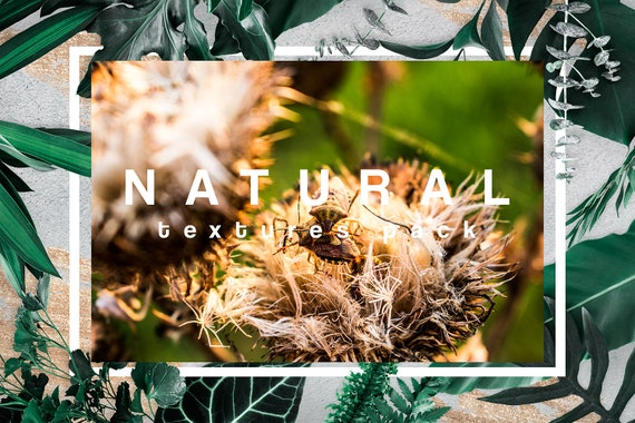 Download overlays, download textures photoshop, 30 Nature