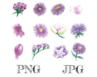 Purple Watercolor Flowers Bundle PNG, Purple Flowers, Floral Waterslides, Sublimation PNG | Digital Download | Printable Art | Digital Art