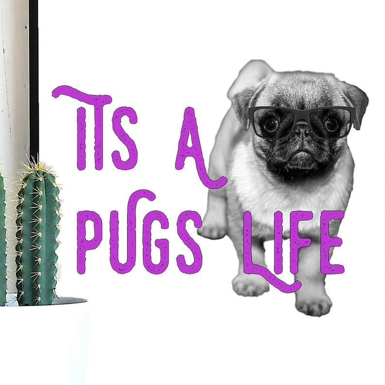 Its a Pugs Life Pug decal heat transfer dog waterslide image 0