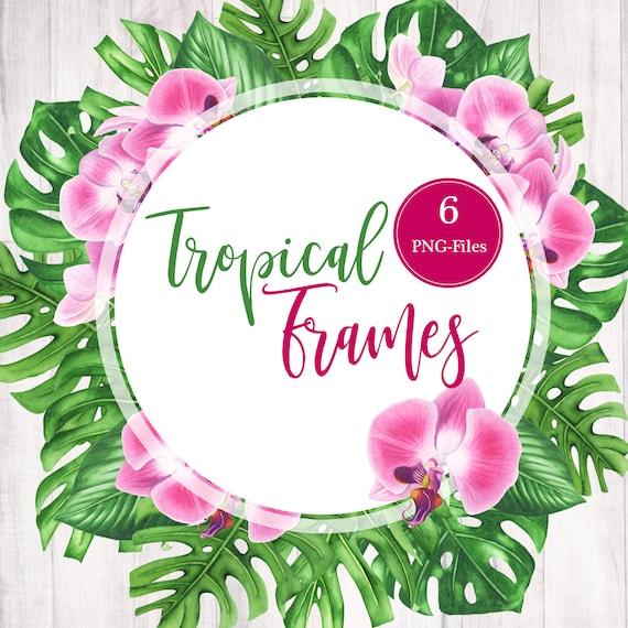 Watercolor Tropical Clip Art Flowers. Floral Frame Clipart Watercolor Floral Border Tropical Foliage Plumeria Tropical Background