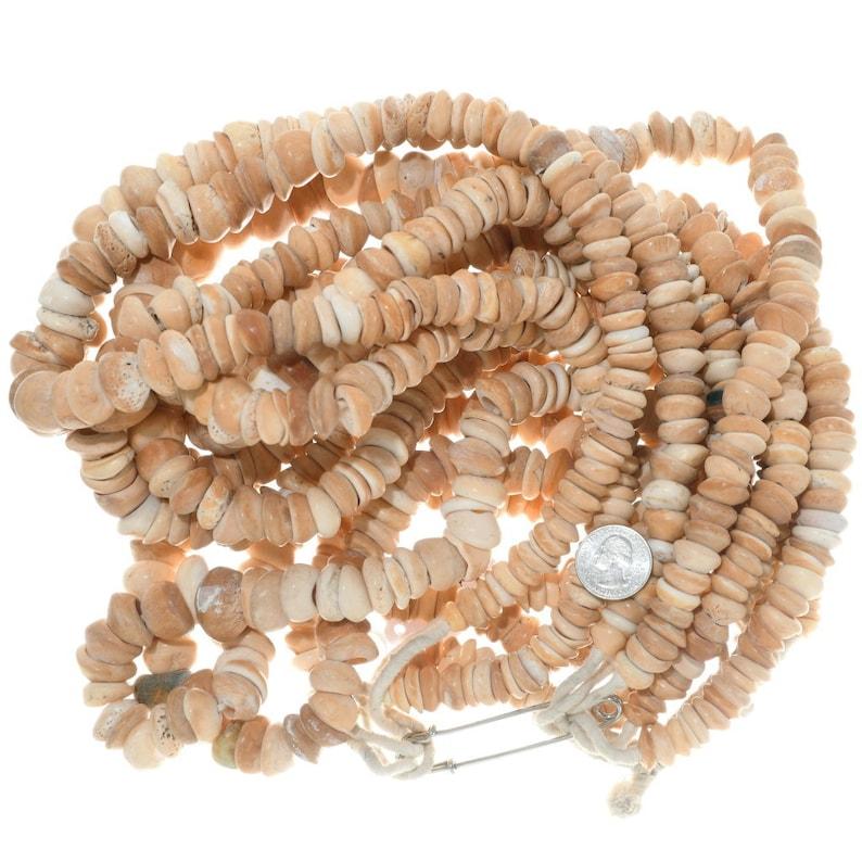 Graduated Natural Shell Beads Tans Creams 30 Inch Strand 3675