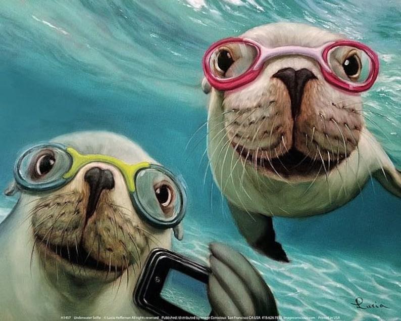 selfie seals sea lion marine life seal poster  Lucia image 0