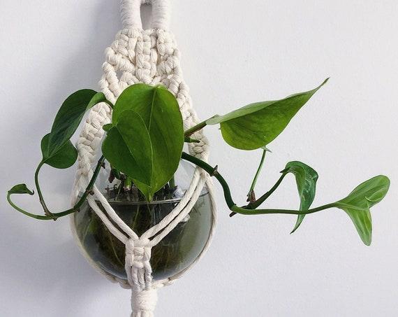 Ofelia Plant Hanger