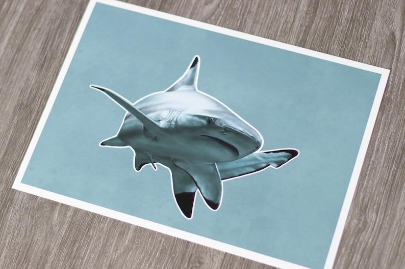 Shark  DigitalArt  Art Print  A4 image 0