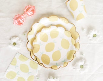 Now and Then Party Box: large plates, small plates, cups, napkins, straws, confetti