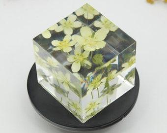 Handmade resin Hair elastic with real flowers Hepatica