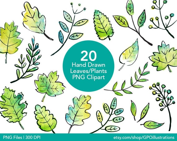 Leaves Watercolor Doodle Clipart Leaves Doodle Clipart Hand | Etsy