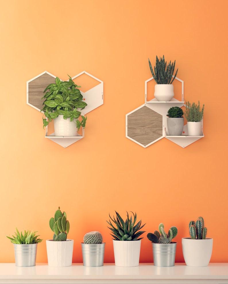 Wall Plant Holder Indoor Wall Planter Modular Plant Hanger ...