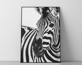 ZEBRA AND BABY BLACK AND WHITE CANVAS PRINT PICTURE WALL ART FREE UK DELIVERY