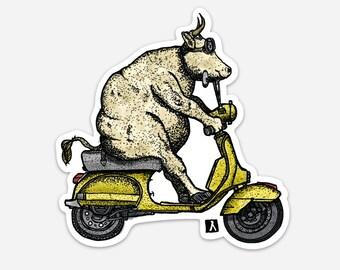 BellavanceInk: Cow Taking A Ride On Her Scooter Vinyl Sticker