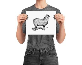BellavanceInk: Pen & Ink Drawing of a Proud Sheep Print