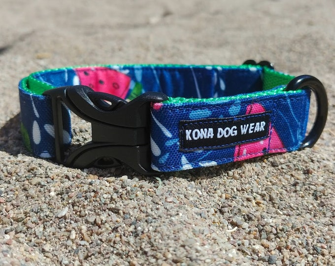 Featured listing image: Juicy Summer-Kona Adventure Collar
