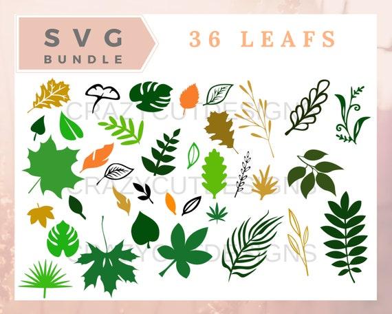 Leaf Svg Bundle Leaves Svg Leafs Svg Files For Cricut Leaf Etsy