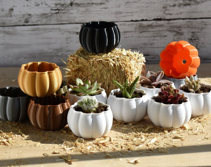 Featured listing image: Mini Pumpkin Planter Set of 6   8 Autumn Colors   Indoor or Outdoor