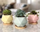 Mini Ceramic Unique Succulent Planter Cute Small Bamboo Tray Flower Pot With Drainage Hole Set Of 3