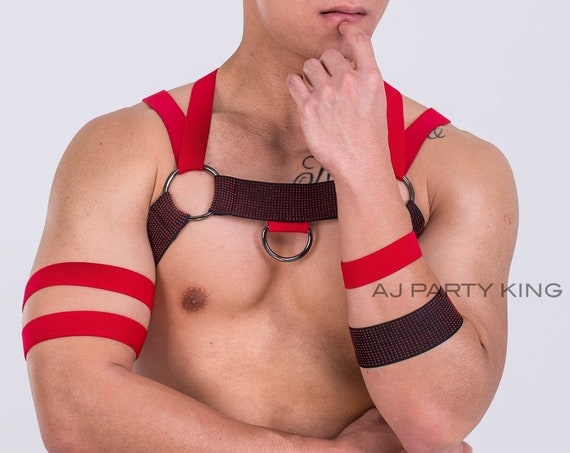 AJ Red Rogue - Circuit Party Harness