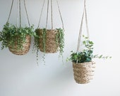 Natural Seagrass Hanging Planter, Handmade Indoor Plant Pot Holder, Hanging Basket, For House Plants, Succulents, Air Plants and Small Cacti