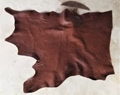 Leather Bison Hide Piece 9.75 SqFt Mocha