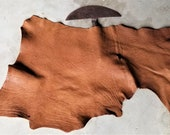 Leather Bison Hide Piece 6.28 SqFt Walnut