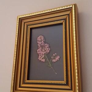 pressed flowers frame gold vintage frame nature lover gift Real pressed Heather flower framed small floral art pressed flower art