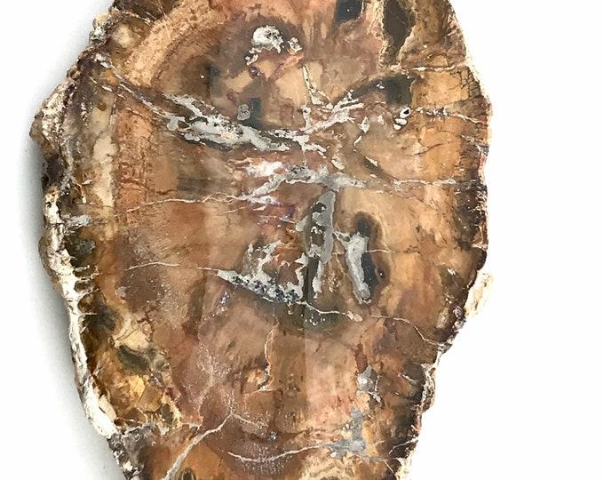 Petrified Wood Slab Reiki tool Home decor Meditation Tool Crystal Grid Raw Stone Wood stone Wood rock Petrified stone Healing stone