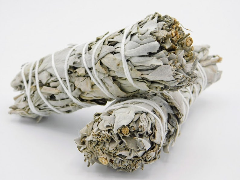 California White Sage 4.5 Inches,