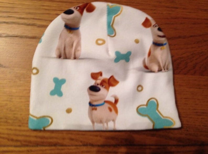 Secret Life Of Pets Baby hat