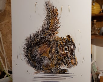 Squirrel limited edition A4 print - 1 available
