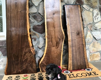 """Black Walnut medium Live Edge Slabs - up to 19"""" Wide and 76"""" Long"""