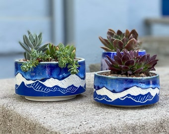 Handmade porcelain carved succulent or small bonsai planter