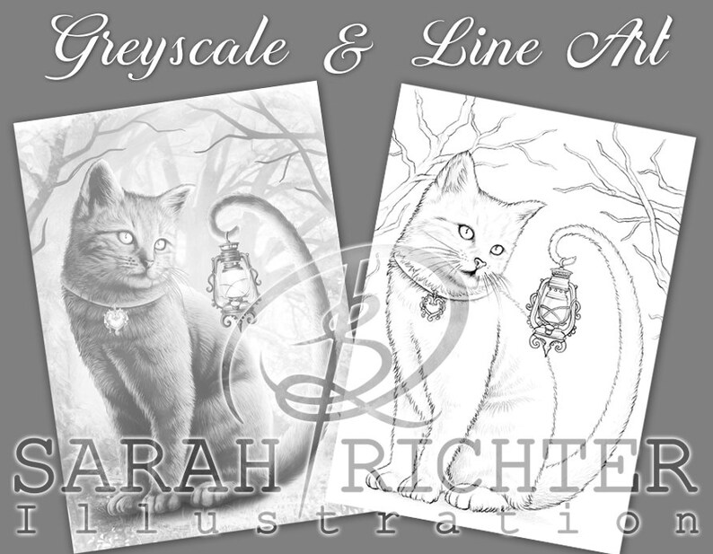 Salem / Greyscale & Line Art Coloring Page Pack / Gothic image 0