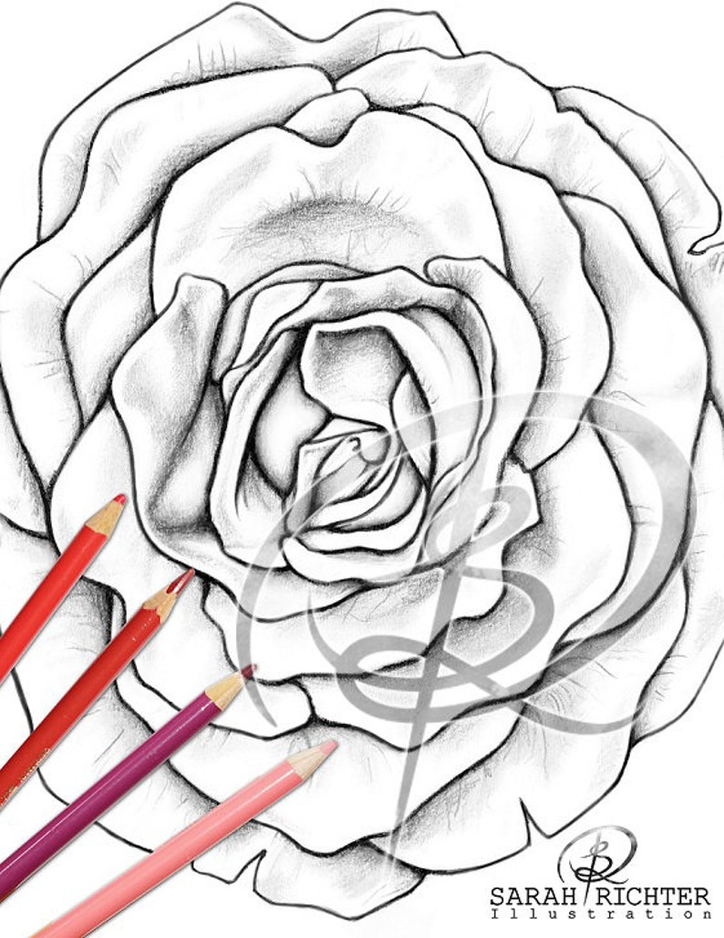 Blossom / Coloring Page  Flower / printable fantasy colouring image 0