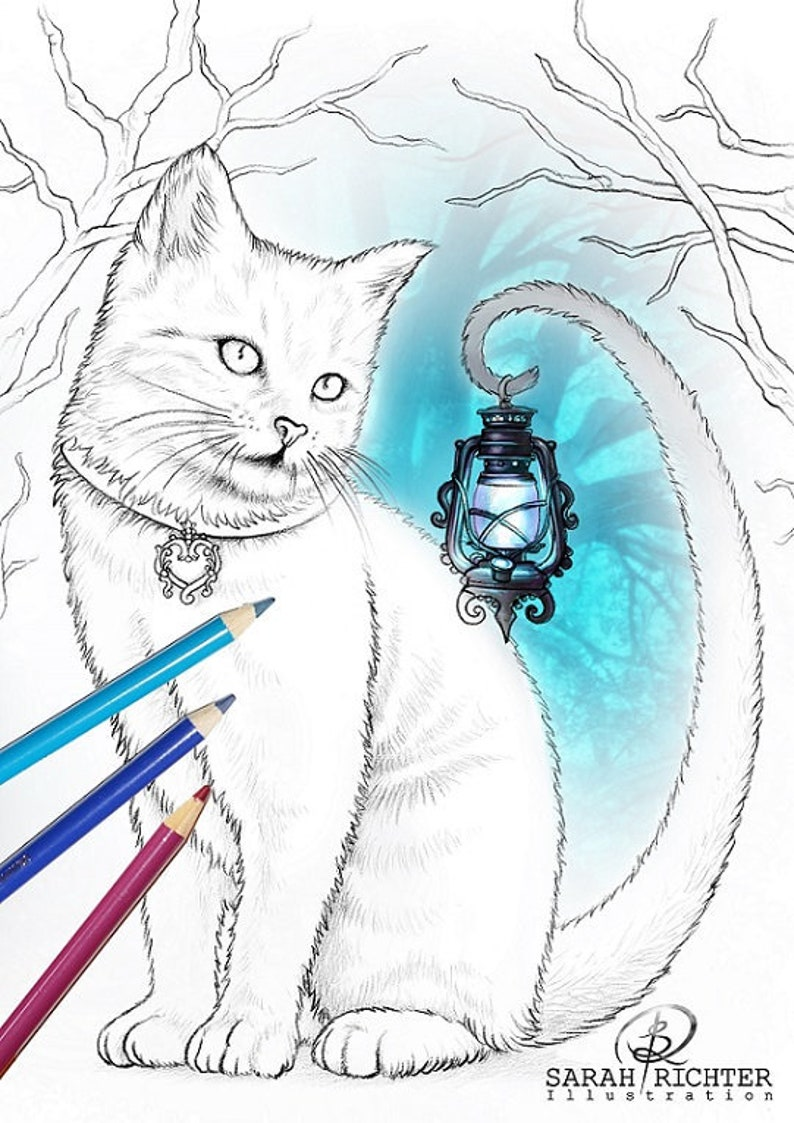 Salem / Coloring Page  Gothic Fantasy by Sarah Richter / image 0