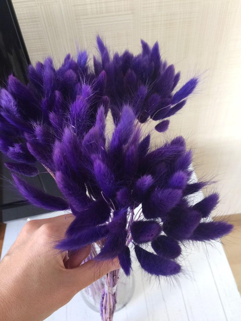 40 cm Length fo Floral Decor Rustic Home Decor 50 PCS Dried Lagurus Ovatus Flower Bunches Harr/'s Tail Grass Floral Arrangement