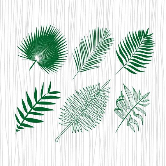 Palm Leaf Svg Tropical Leaf Clipart Monstera Leaf Svg Palm Etsy